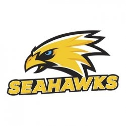 We play with SEAHAWKS GDYNIA for the next season